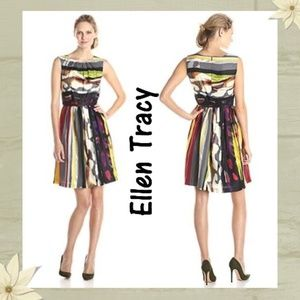 Ellen Tracy Multicolor Printed Fit-And-Flare Dress